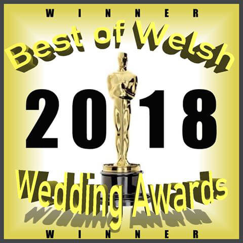 Winner of Best Makeup and Hair at Welsh Wedding Awards 2018